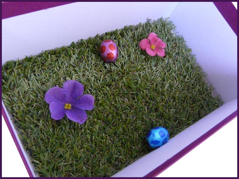 box_perche_printemps_17