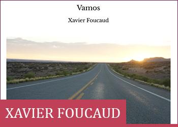 Itw_xavier_foucaud_6